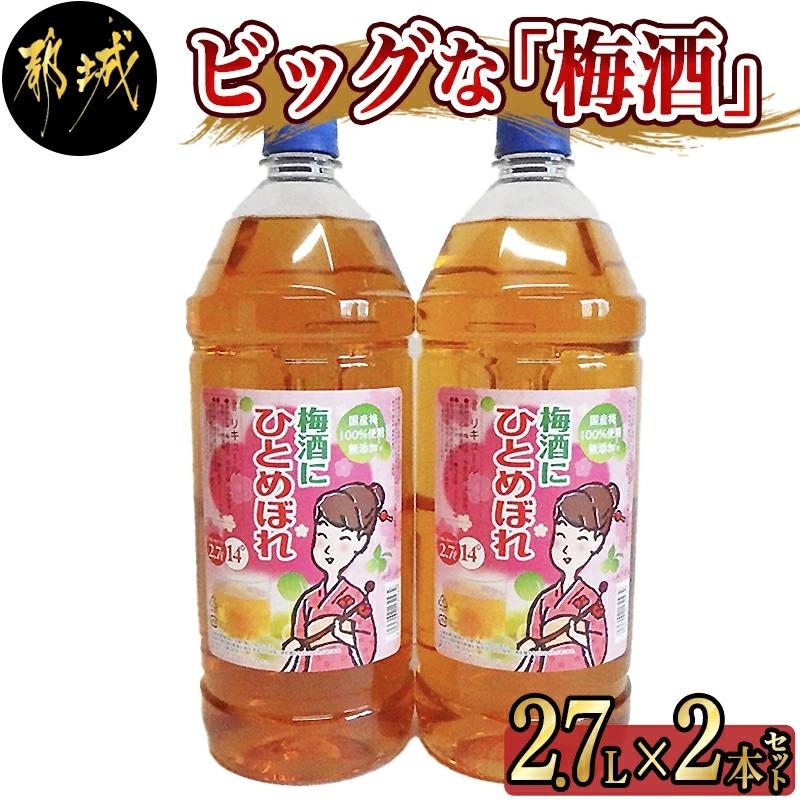 ビッグな「梅酒」2.7L×2本_AA-3801