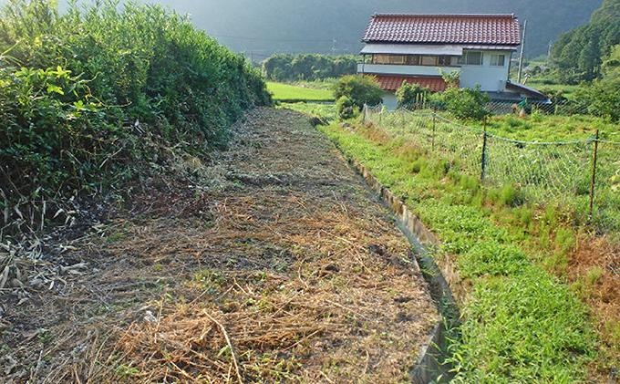 空き家・空き地の草刈り 5時間コース