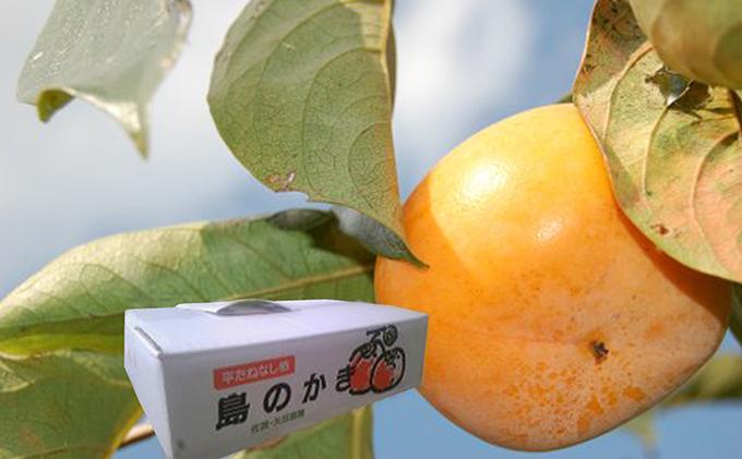 たねなし柿(ひらたねなし)農薬節減栽培 5キロ