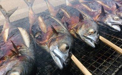 こだわりの炭火焼 鯖の丸焼き 3匹