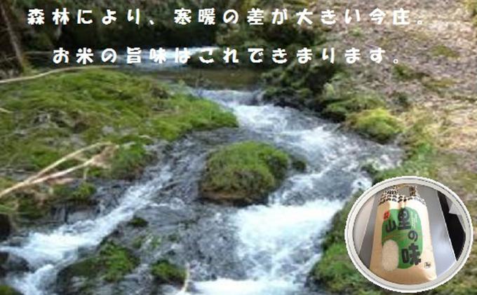 【朝夕の寒暖差が生む極旨のお米】 今庄産コシヒカリ 10kg