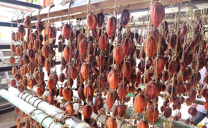 今庄特産つるし柿