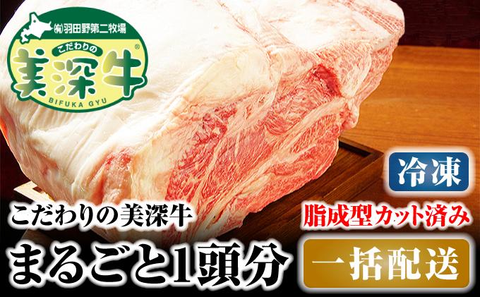 北海道 こだわりの美深牛1頭分 成型脂カットあり(冷凍)