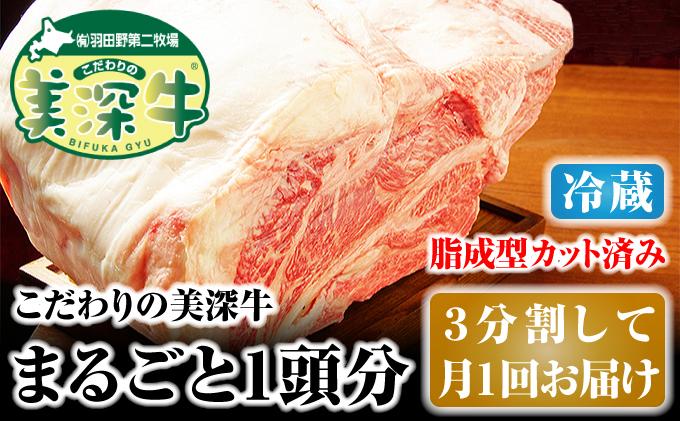 北海道 こだわりの美深牛1頭分(冷凍)3分割して月1回お届け