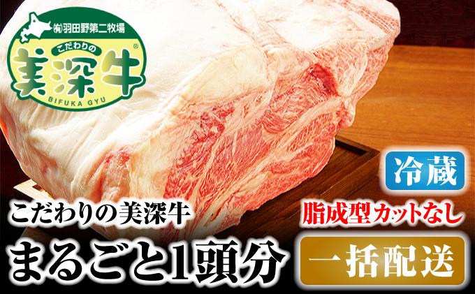 北海道 こだわりの美深牛1頭分 成型脂カットなし(冷蔵)
