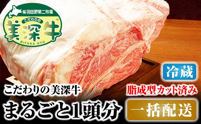 北海道 こだわりの美深牛1頭分 成型脂カットあり(冷蔵)