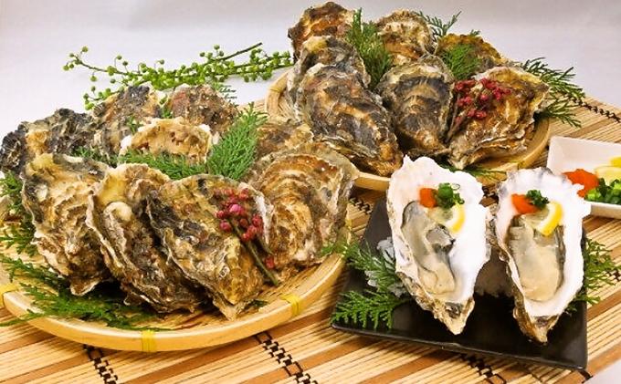 北海道厚岸産殻付き牡蠣20個(マルえもん Lサイズ)