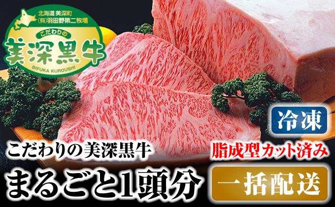 北海道 こだわりの美深黒牛1頭分 成型脂カットあり(冷凍)