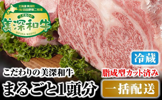 北海道 こだわりの美深和牛1頭分 成型脂カットあり(冷蔵)