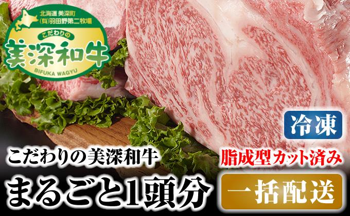 北海道 こだわりの美深和牛1頭分 成型脂カットあり(冷凍)