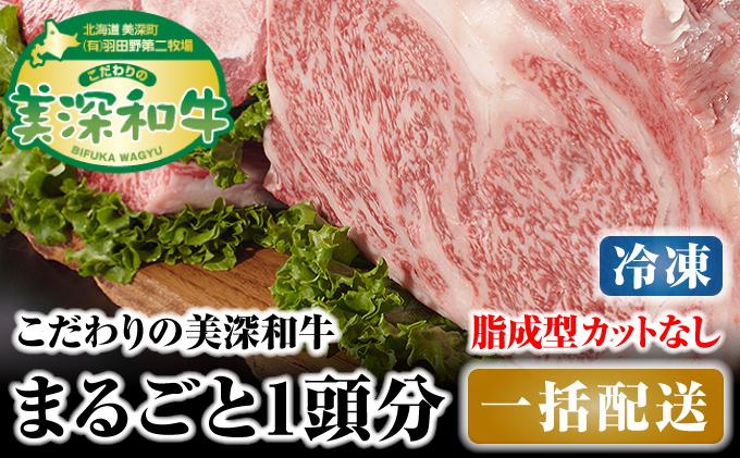 北海道 こだわりの美深和牛1頭分 成型脂カットなし(冷凍)