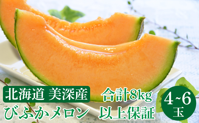北海道 美深町産 びふかメロン 4玉~6玉