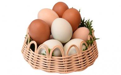 おいしい上野原産のこだわり卵