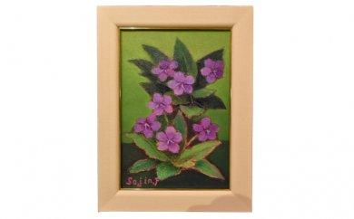 降矢組人先生の『すみれの花(紫)』
