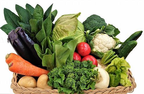 穫れたて!野菜・果物詰め合わせ10~12品★あんずの里[C0042]