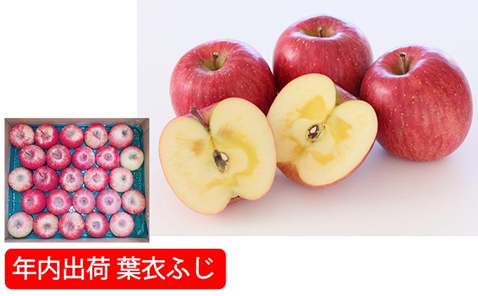 年内 蜜入り糖度保証葉衣ふじ約10kg家庭用 青森県板柳町産