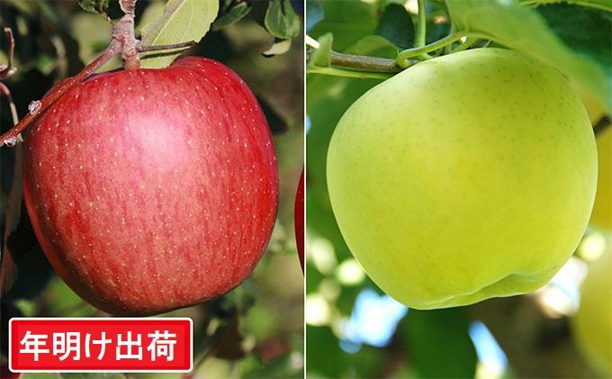 【年明け】サンふじ&王林約10kg  糖度13度以上