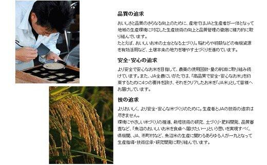 愛知県碧南市のふるさと納税 新潟県魚沼産コシヒカリ10kg 安心安全なヤマトライス H074-004