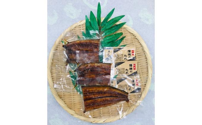 浜名湖うなぎ蒲焼(約70g)3パックセット