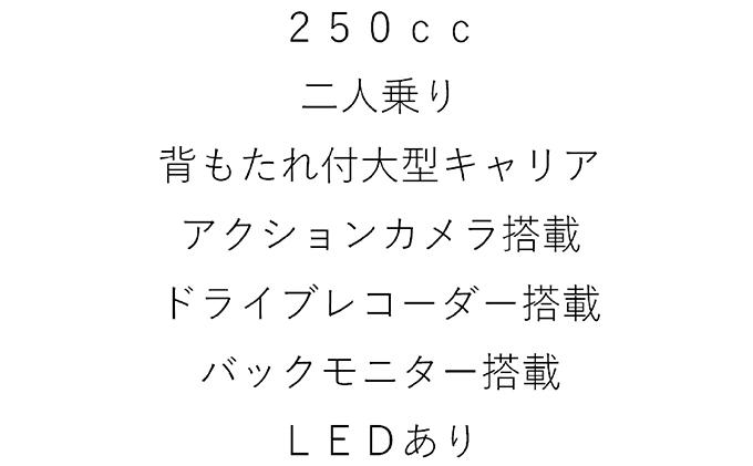 静岡県袋井市のふるさと納税 【土日祝OK】トライクレンタル(黒)4時間