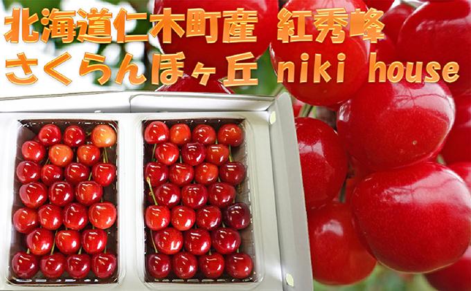 農園厳選さくらんぼ「紅秀峰」2Lサイズ以上600g(品質:ギフト向け)