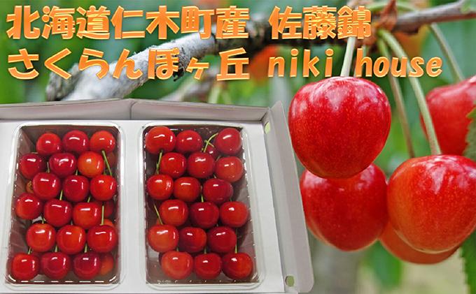 農園厳選さくらんぼ「佐藤錦」Lサイズ以上600g(品質:ギフト向け)