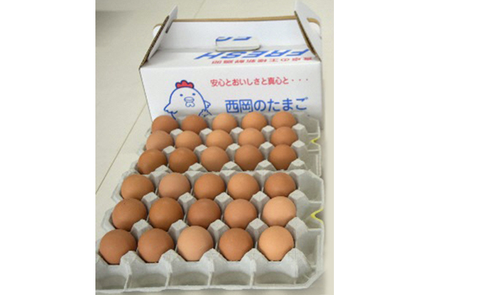 【高級赤玉・安全飼料使用】湖南市産もみじ卵30個 頒布コース(6か月)