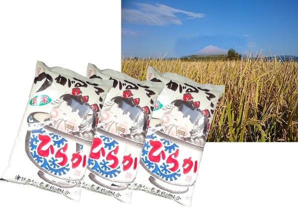 ひらか米15kg(平川市産つがるロマン精米5kg×3)