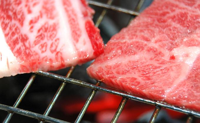 【とろける美味しさ】石見和牛 ミックス焼肉用 300g