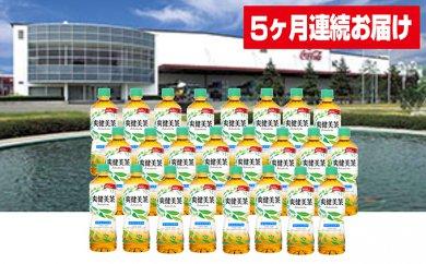 【5ヶ月連続お届け】蔵王工場直送 爽健美茶600ml×24本