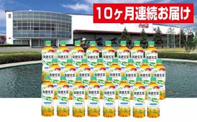 【10ヶ月連続お届け】蔵王工場直送 爽健美茶600ml×24本