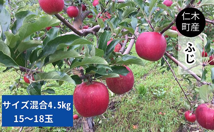 仁木町の採れたてりんご「ふじ」4.5kg≪妹尾観光農園≫