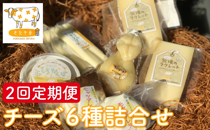 北海道美深町 チーズ6種詰め合わせ 2回定期便 【北ぎゅう舎】