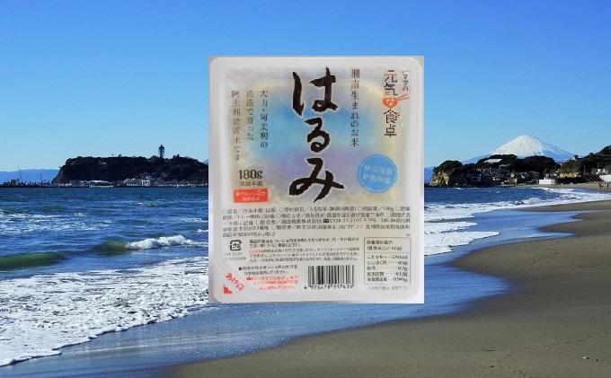 湘南生まれのお米 はるみごはんパック12食