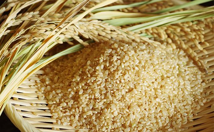 岡山県赤磐産「きぬむすめ」30kg玄米