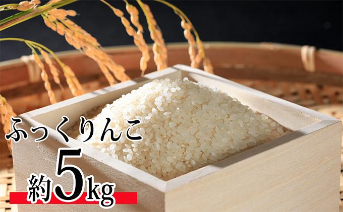 北海道今金産 ふっくりんこ5kg