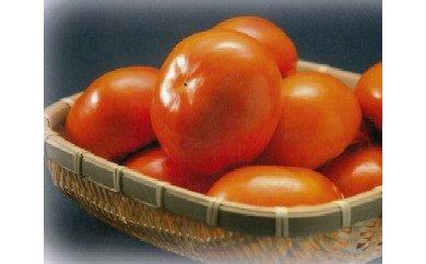 【富有柿の発祥の地 瑞穂市!!】富有柿贈答用12個入り