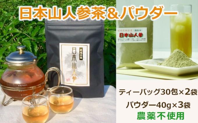 ★希少★日本山人参で健康に!お茶2か月分+パウダー3袋