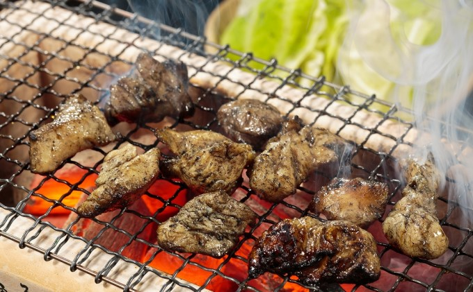 福岡県朝倉市のふるさと納税 はかた地どり炭火焼セット