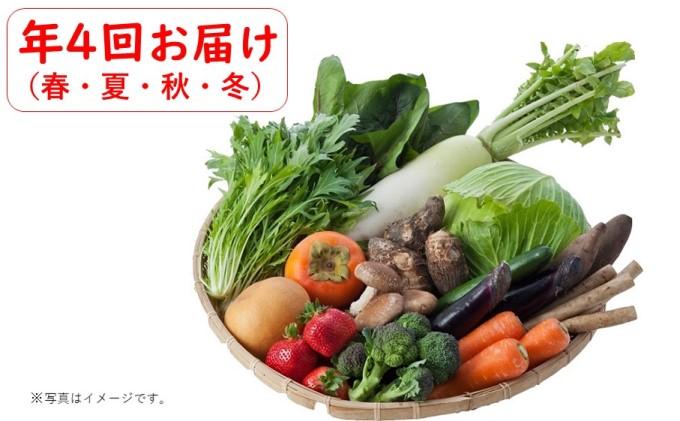 野菜セット(定期便年・春夏秋冬年4回)