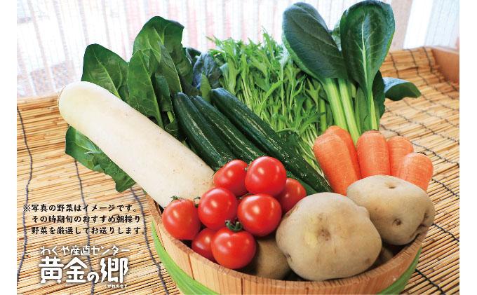 黄金の郷 季節のお野菜お楽しみAセット