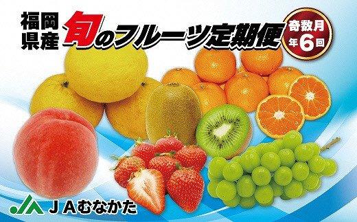 旬のフルーツ定期便 年6回【奇数月コース】