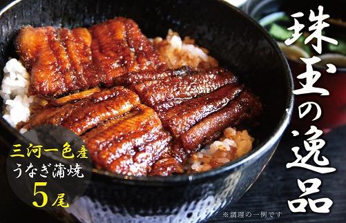 三河一色産 鰻蒲焼き 珠玉の逸品 5尾 H106-003