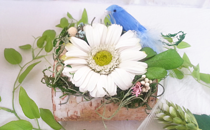 プリザーブドフラワー ガーベラと白樺