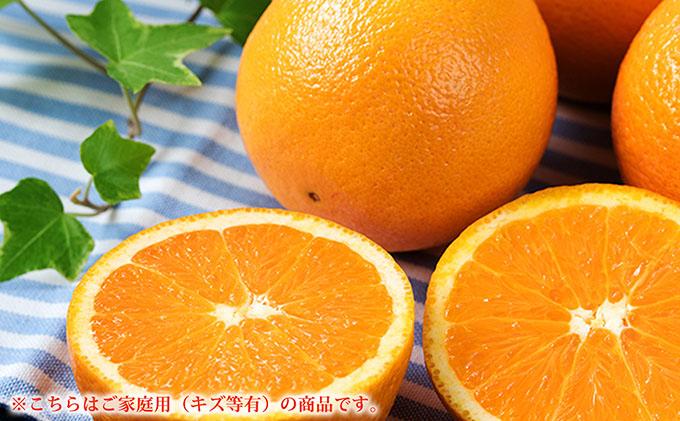 こだわりの国産ネーブルオレンジ優 ご家庭用8kg
