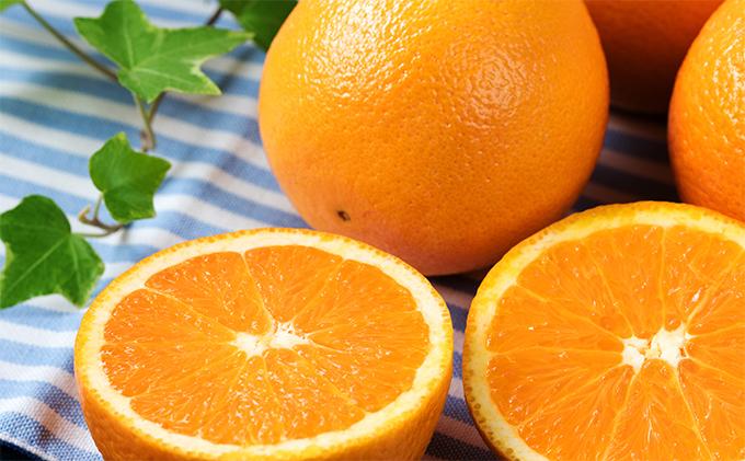 藤秀園 こだわりのネーブルオレンジ赤秀(27個~30個入り)約5kg
