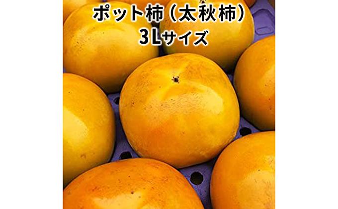 こだわり栽培ポット柿(太秋柿) 3Lサイズ9個入り