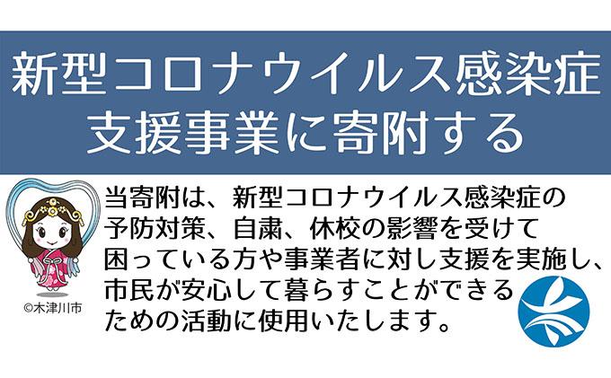 新型コロナウイルス感染症対策・支援事業寄付金(10万円)返礼品なし