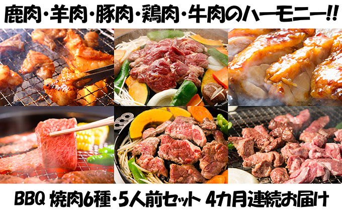 【4カ月連続】エンジョイ!BBQセット ~焼肉6種 5人前コース~