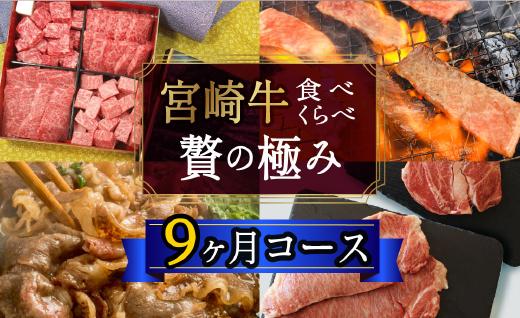 宮崎牛食べ比べ贅の極み9ヶ月コース 合計5.48kg 【定期便】